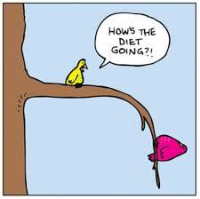 diet12