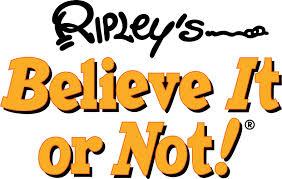 ribpley